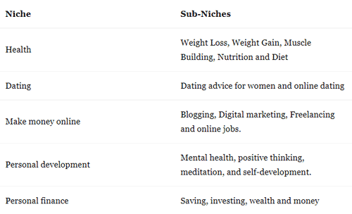 niche-and-sub-niches